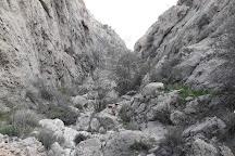 Bamou National Park, Fars Province, Iran