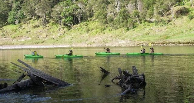 Whanganui Scenic Experience Jet