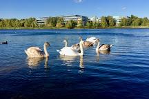 Bedfont Lakes Country Park, Hounslow, United Kingdom