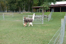 Sweet Brook Farm, Williamstown, United States