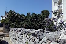 Parrocchia Santuario Basilica S.S. Cosma E Damiano, Alberobello, Italy