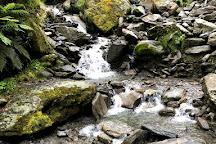Callery Gorge Walk, Franz Josef, New Zealand