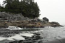 Subtidal Adventures, Ucluelet, Canada