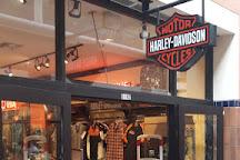 Peterson's Harley-Davidson, Miami, United States