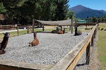 Hanmer Springs Animal Park, Hanmer Springs, New Zealand