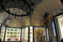 Museo della Rocca di Monfalcone, Monfalcone, Italy