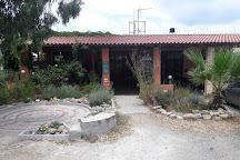 Fisika, Kolymbari, Greece