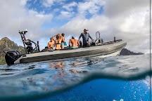 Blue Ocean Adventure Tours, Kekaha, United States