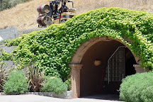 Healdsburg Wine Tours, Healdsburg, United States