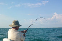Reel Therapy Fishing Charters, Tampa, United States