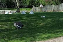 Fishers Farm Park, Wisborough Green, United Kingdom