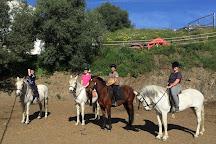 Andale Centro de Equitacion, Nerja, Spain