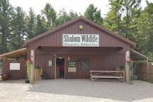 Shalom Wildlife Zoo, West Bend, United States