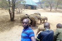 Reteti Elephant Santuary, Samburu National Reserve, Kenya