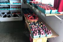 Schartner's Farm Market, Egg Harbor, United States