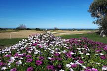 San Domenico Golf, Fasano, Italy