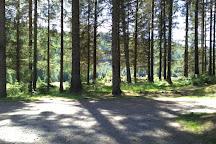 Three Lochs Forest Drive, Aberfoyle, United Kingdom
