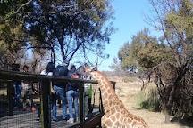 Vaya Africa Travels, Johannesburg, South Africa