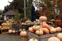 Gordon Skagit Farms, Mount Vernon, United States