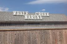 Whale Creek Marina, Strathmere, United States