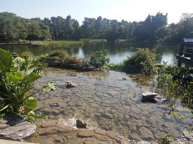 Guangdong Haizhu National Wetland Park