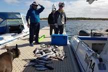 Triple Bay Charters, Port Lincoln, Australia