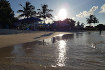 Turtle Bay, St. George's, Grenada