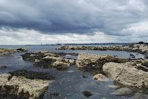 Beach Road Nature Reserve, Whitehead, United Kingdom