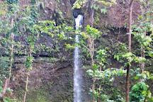 Spanny Falls, Dominica