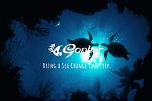 Gopher Diving Okinawa, Ginowan, Japan