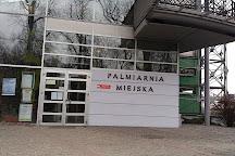 Palmiarnia Miejska, Gliwice, Poland