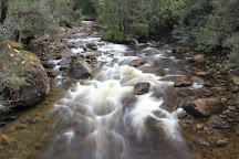Lake St Clair Park Center, Cradle Mountain-Lake St. Clair National Park, Australia