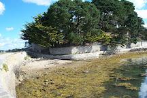 Pointe d'Arradon, Arradon, France