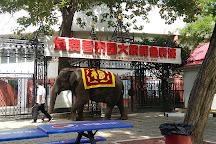 World Park Beijing, Beijing, China