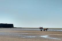 Alibag Beach, Alibaug, India