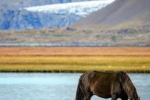 Arctic Adventures, Reykjavik, Iceland