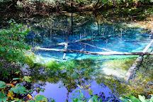 Kaminoko Pond, Kiyosato-cho, Japan