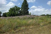 Shawnee Prairie Preserve, Greenville, United States