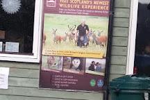 Highland Safaris, Aberfeldy, United Kingdom
