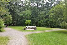 Watkins Glen State Park, Watkins Glen, United States