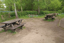 Norsey Wood Local Nature Reserve, Billericay, United Kingdom