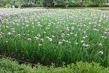 Omura Park, Omura, Japan