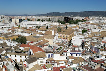 Calleja del Panuelo, Cordoba, Spain