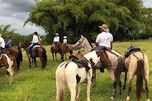 Cabalgatas El Carmelo, La Tebaida, Colombia