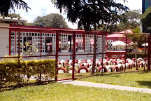Parque da Cidade (Sarah Kubitschek), Brasilia, Brazil