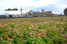 Aguri no Sato Oirase, Oirase-cho, Japan