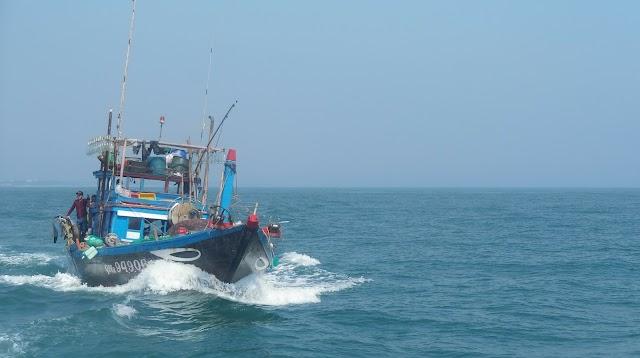 Cham Island Diving