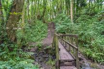 Fairy Glen, Appley Bridge, United Kingdom