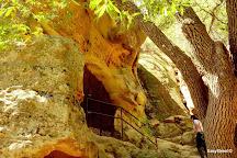 Chumash Painted Cave State Historic Park, Santa Barbara, United States