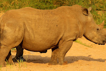 Wild Planet Safari, Hoedspruit, South Africa